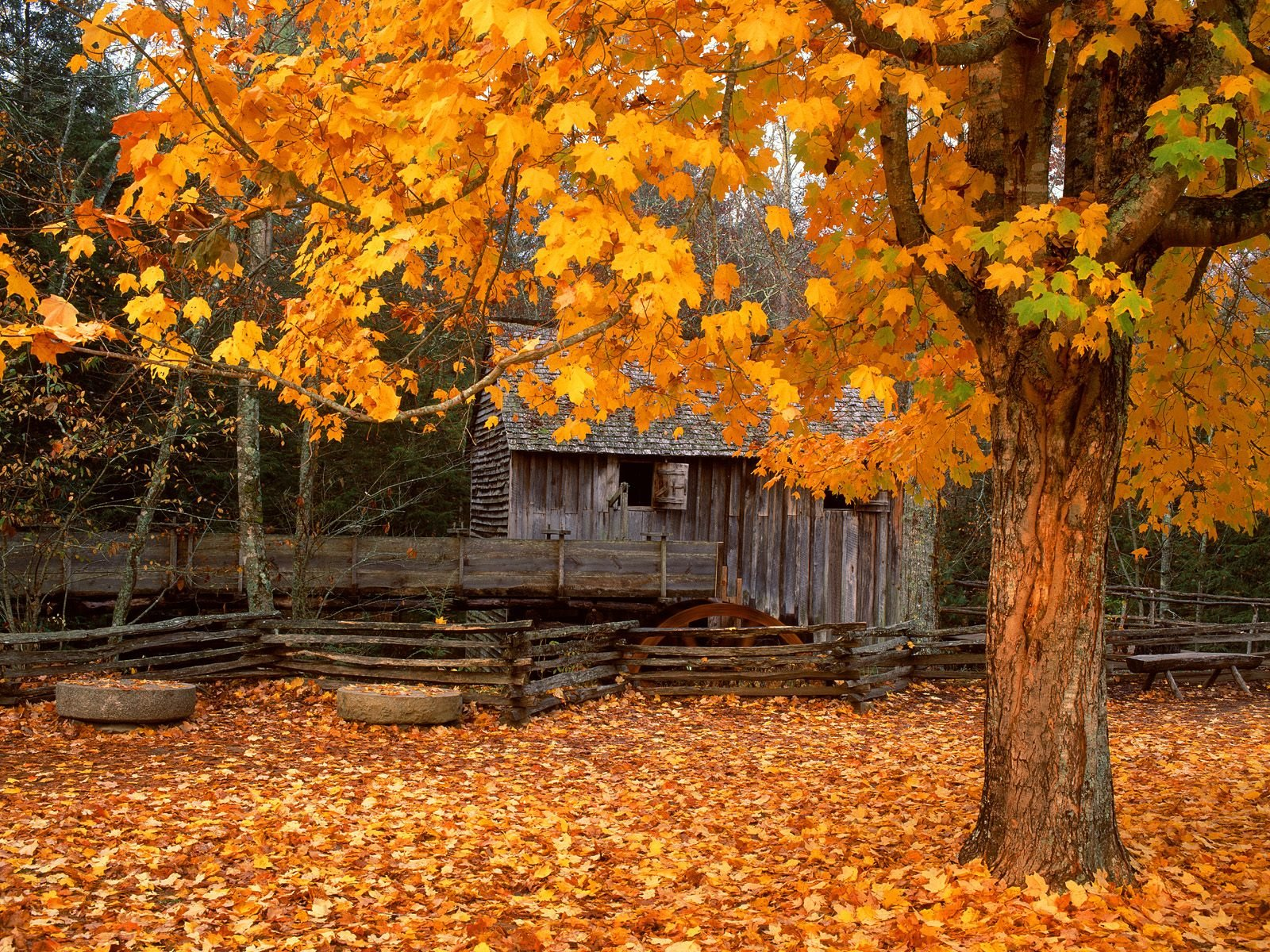 cades cove autumn wallpaper which is under the autumn wallpapers 1600x1200