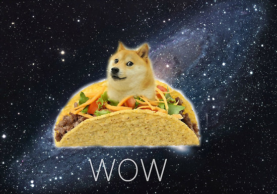 Oh Wow so Doge The Meme of the Day Trigger Plug 550x384