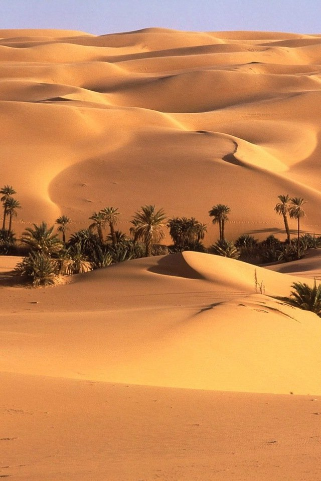 Free Download Sahara Desert Iphone Hd Wallpaper Iphone Hd