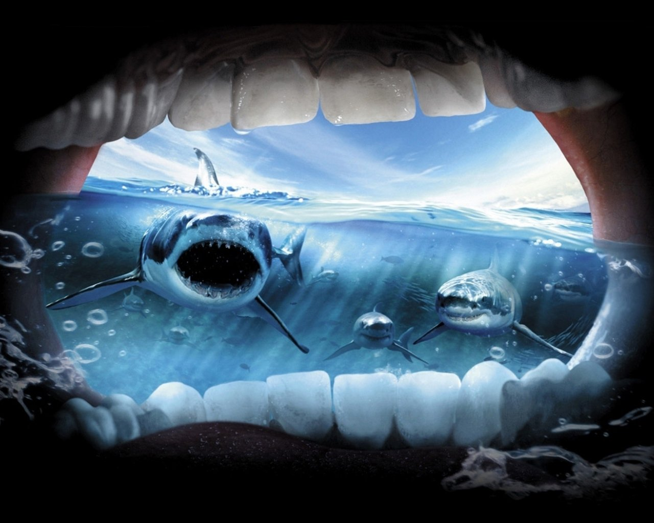 jaws background It started on july 1st a 25-year-old swimmer off the town of beach haven, new  jersey was pulled from the water, the first fatal shark attack.