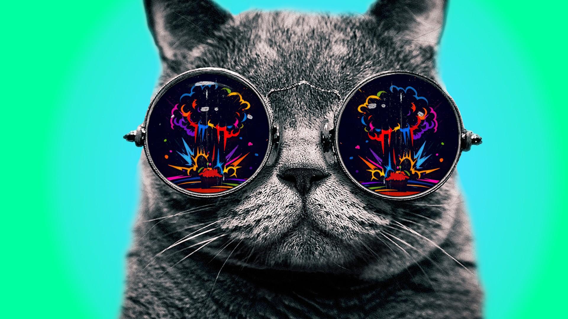 trippy cat wallpaper hd - photo #7