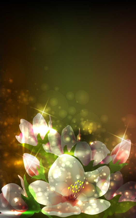 Glowing Flowers Live Wallpaper in Cafe Bazaar for Android 562x900