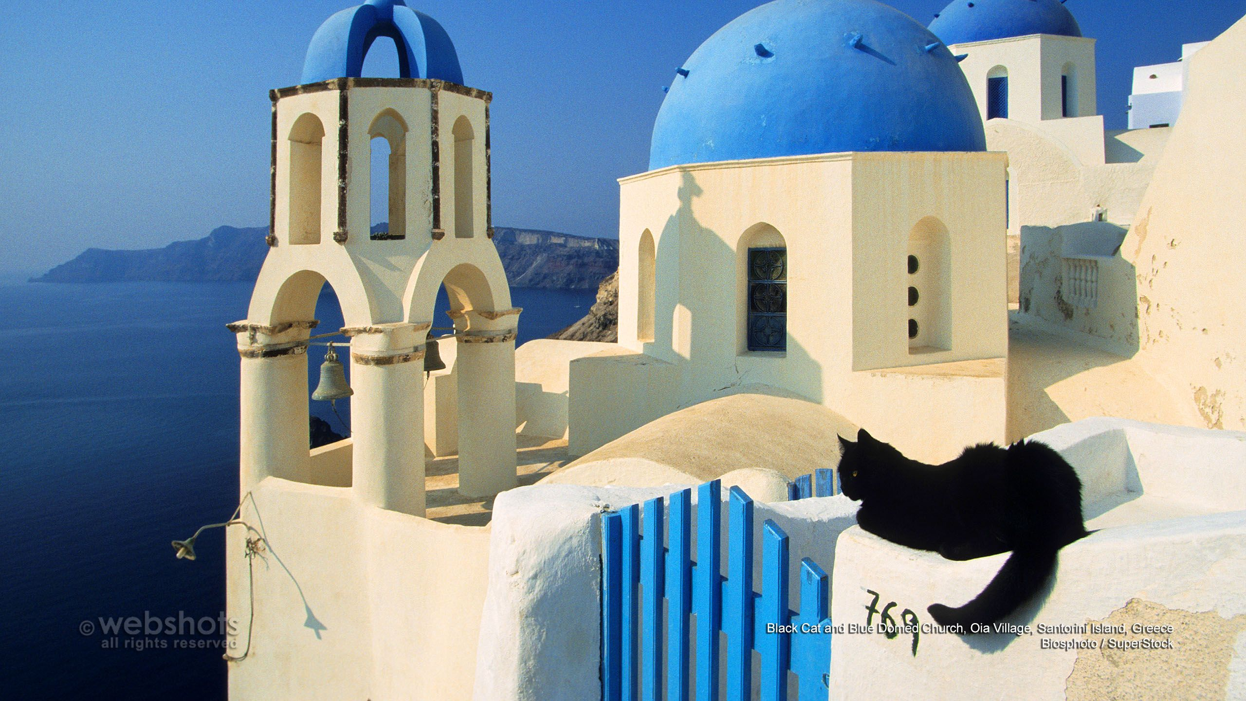 Black Cat and Blue Domed Church Oia Village Santorini Island 2560x1440