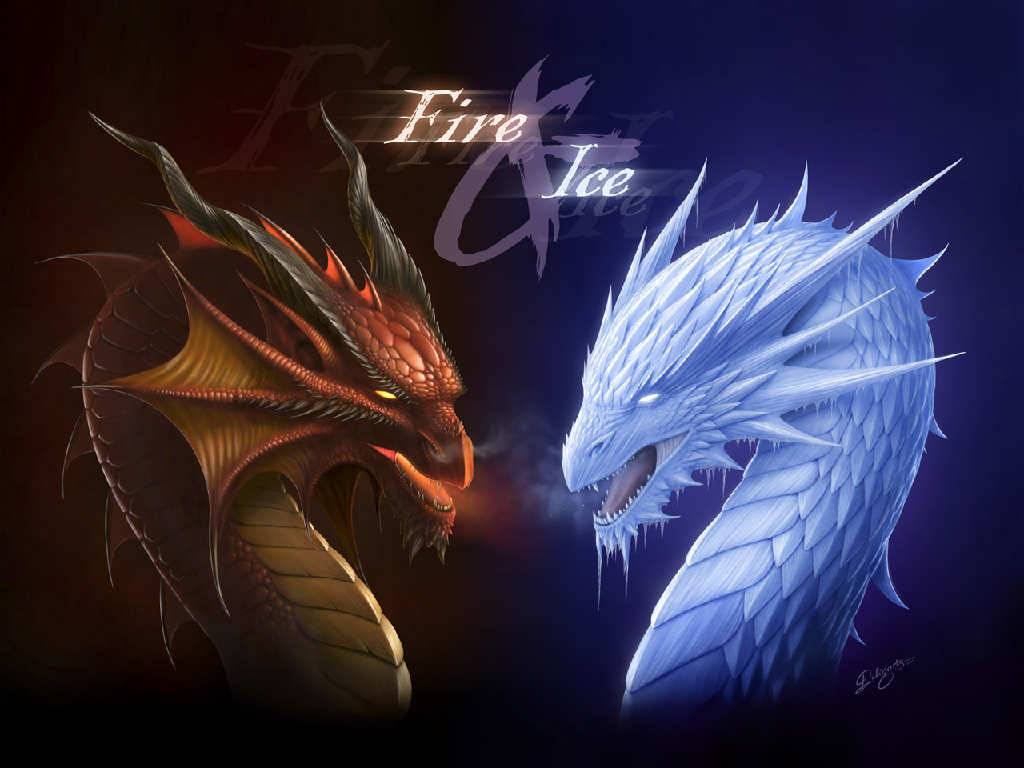 fire and ice dragon   Dragons Wallpaper 1024x768