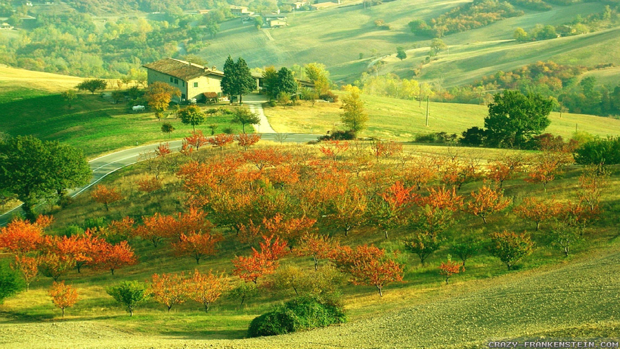 Free Download Pin Wonderful Scene Autumn In Italy Wallpapers 2560x1440jpg On 2560x1440 For Your Desktop Mobile Tablet Explore 44 Wallpaper Italian Scenes Italian Wallpaper Italy Wallpaper Italian Wallpapers For Desktop