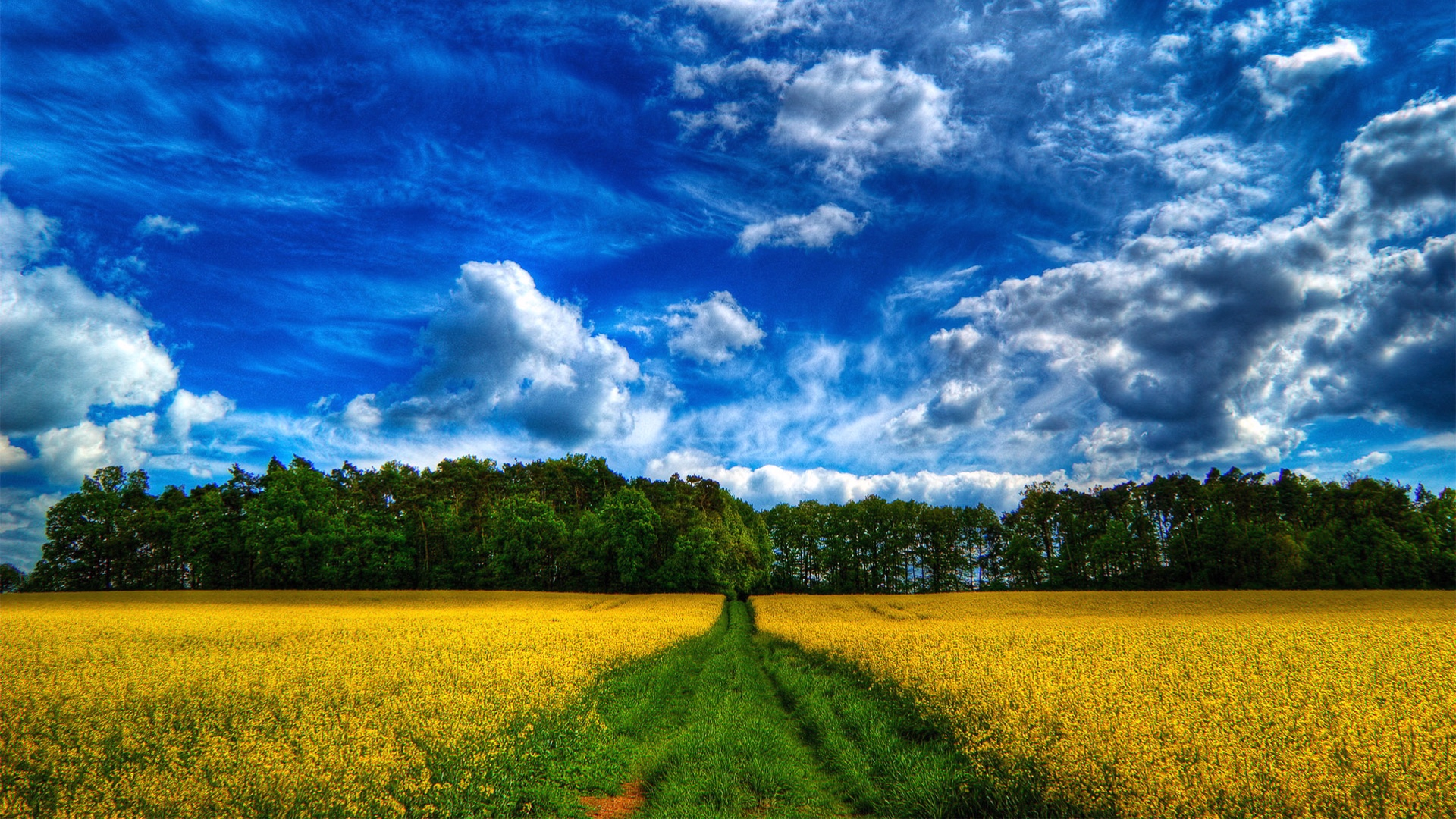 Scenic Background Pictures