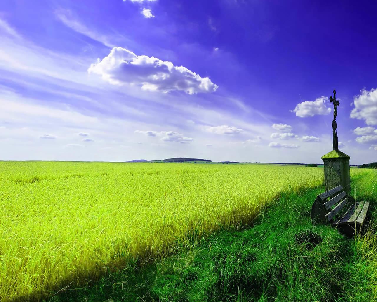 Spring Scenery Vector Download 1280x1024