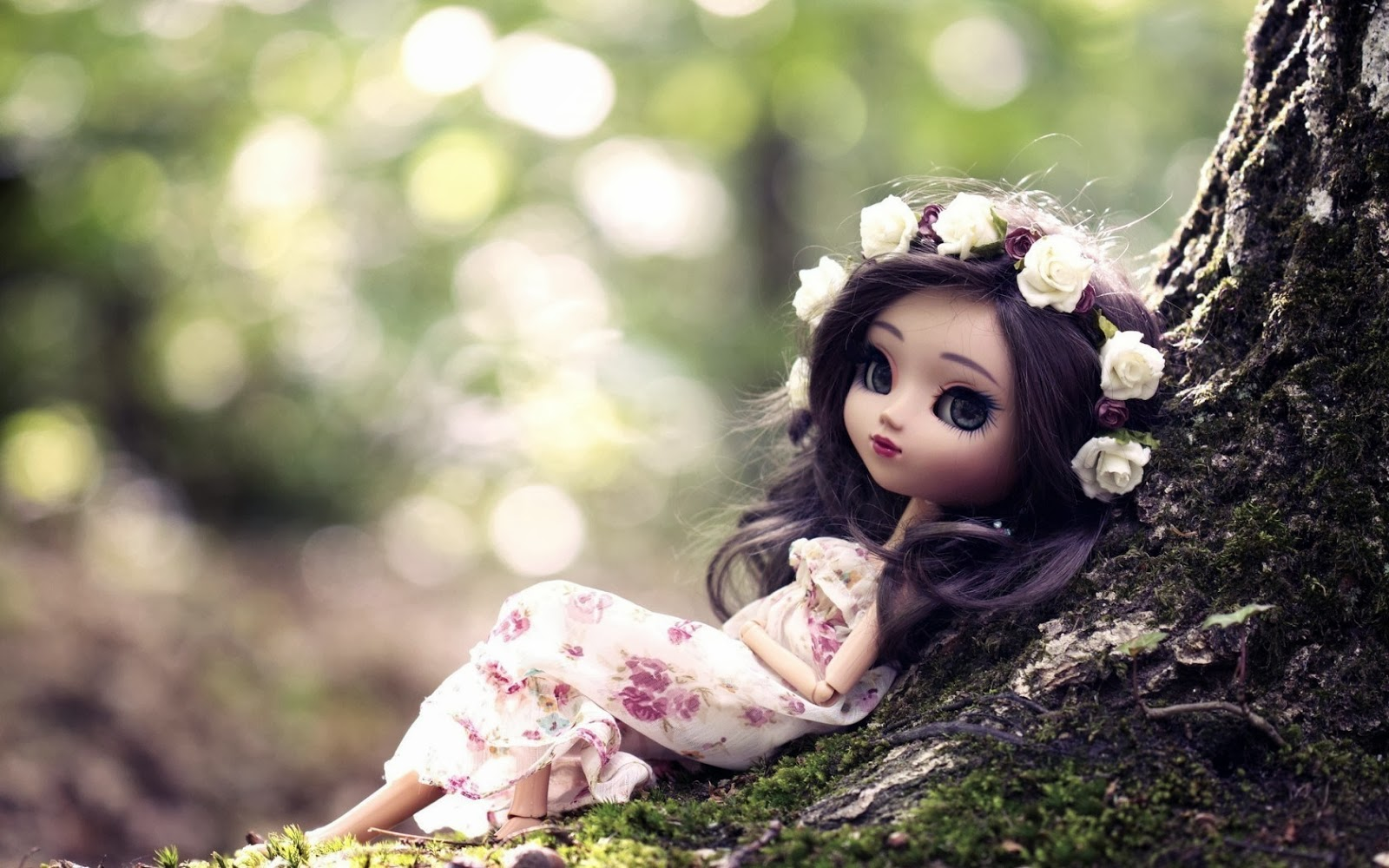 HD Wallpapers Cute Dolls 2014 HD Wallpaper HD wallpapers are situated 1600x1000