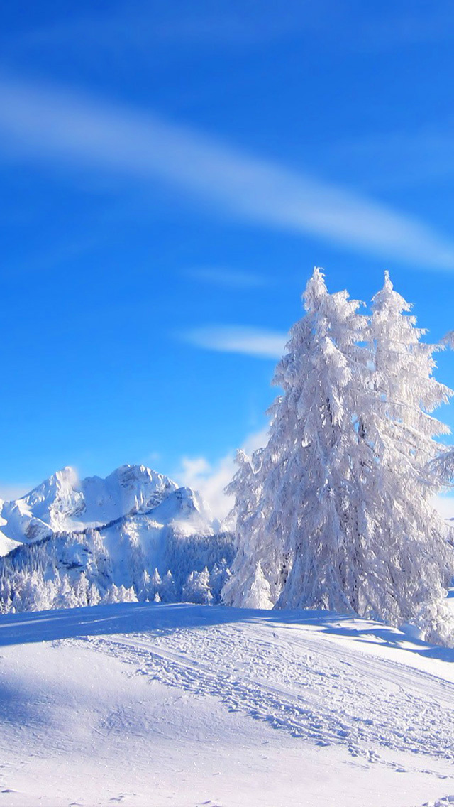 Winter Landscape Iphone Wallpaper