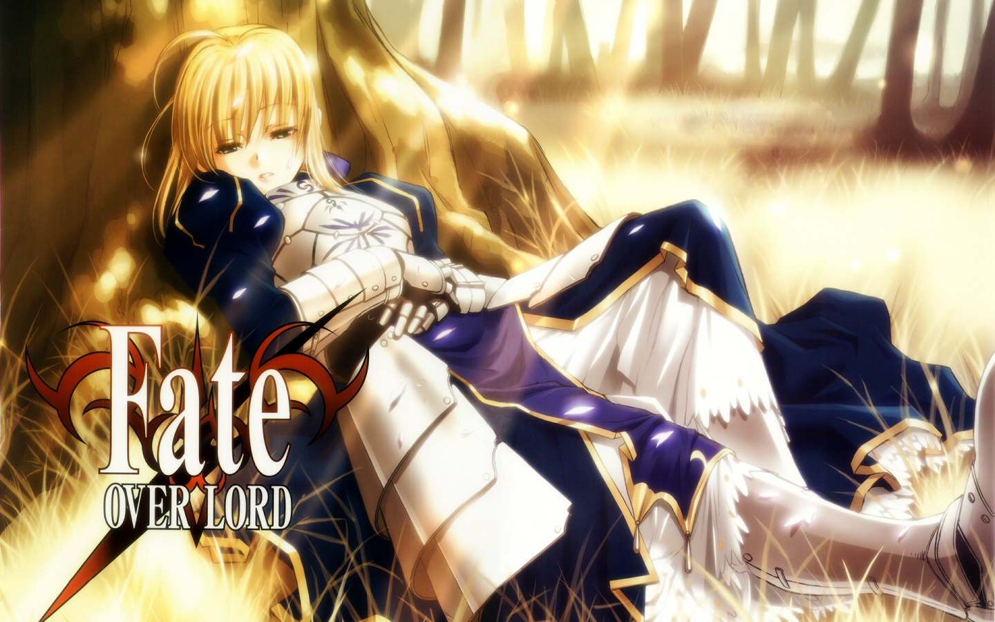 Download Muryou Anime Fate Stay Night Saber Wallpaper 1440x900 1440x900