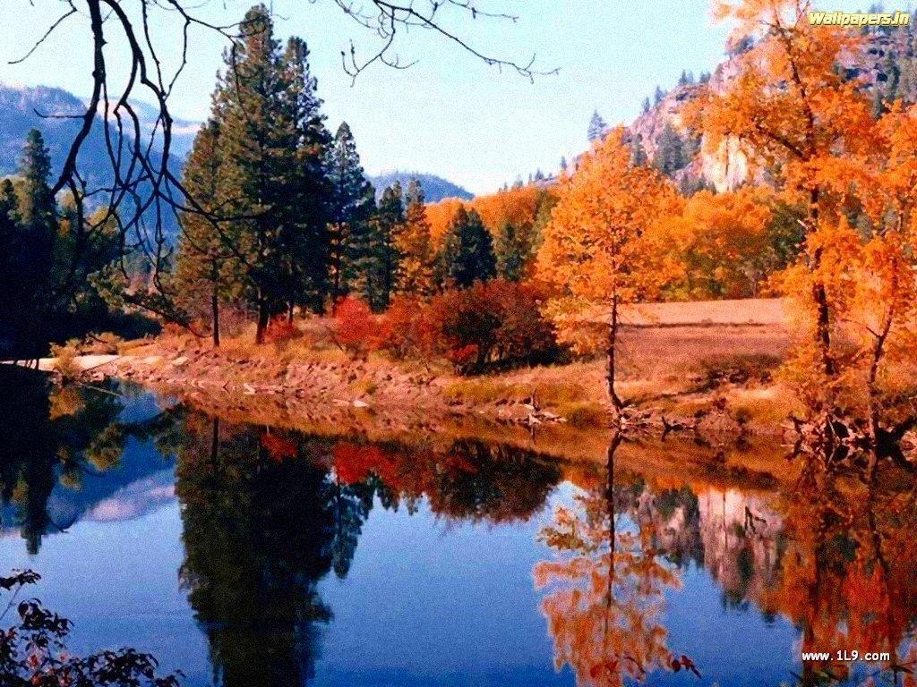 Autumn Desktop Wallpaper Backgrounds 1024x768