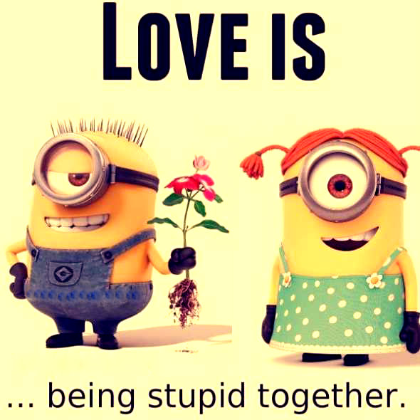 Do you like these amazing Minions Quotes Images   Wallpaper   Pics For 590x590