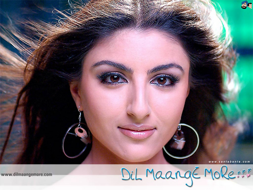 Dil Maange More Movie Wallpaper 4 1024x768