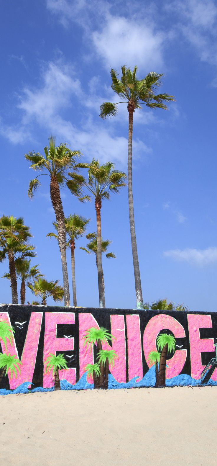 Best 25 Venice beach california ideas 736x1579