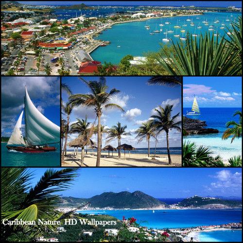 Caribbean Nature HD Wallpapers 500x500
