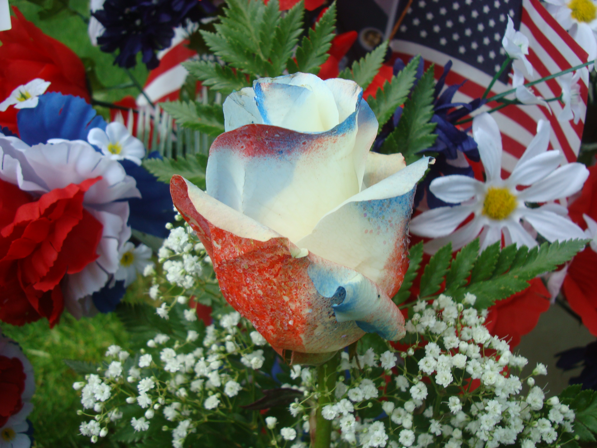 snap memorial day screensavers and wallpaper wallpapersafari photos