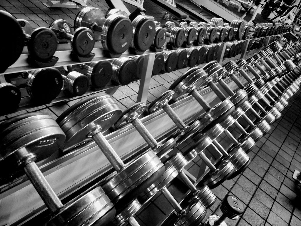 Weights Weights Wallpaper