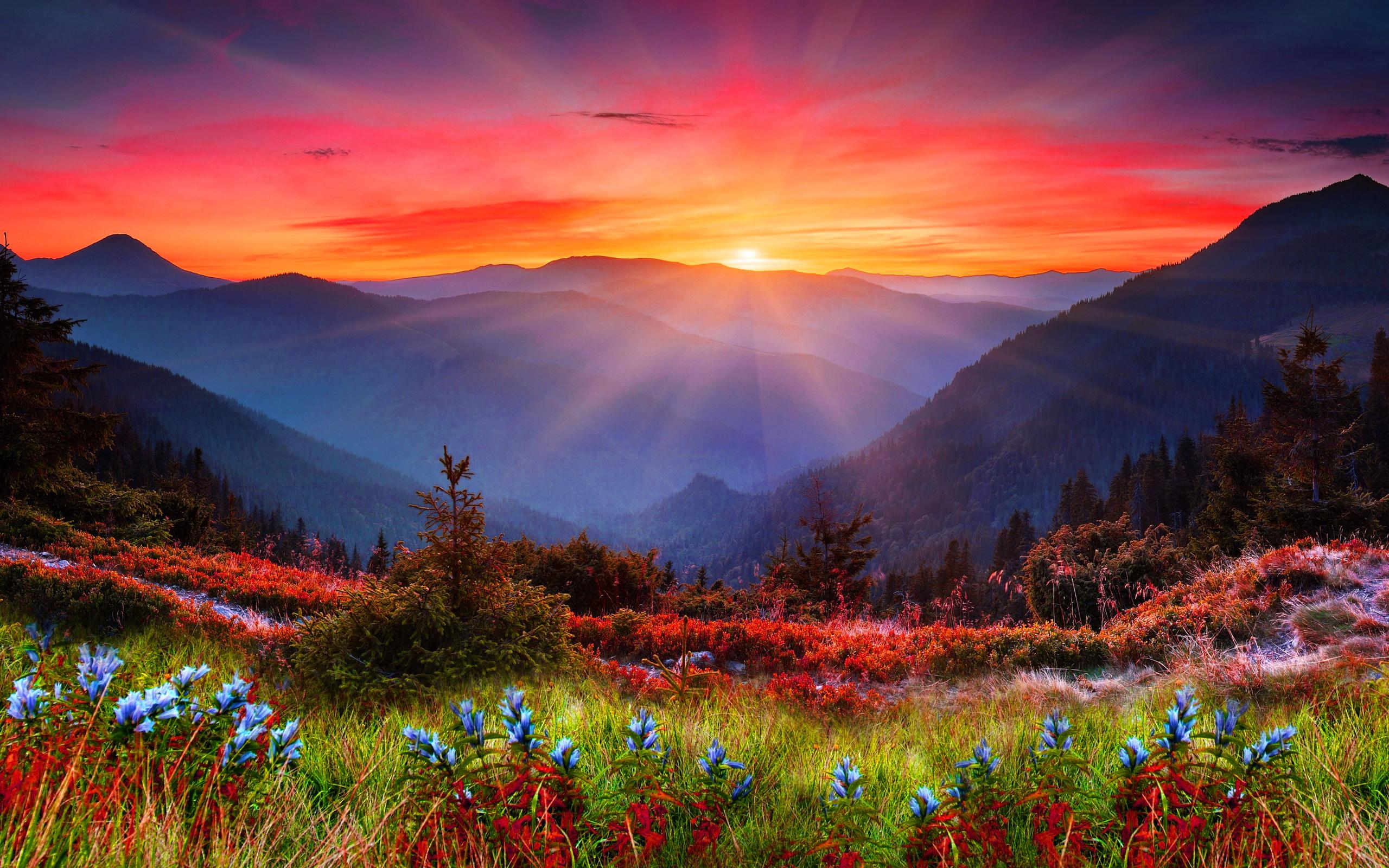 Mountain Screensavers and Wallpapers - WallpaperSafari