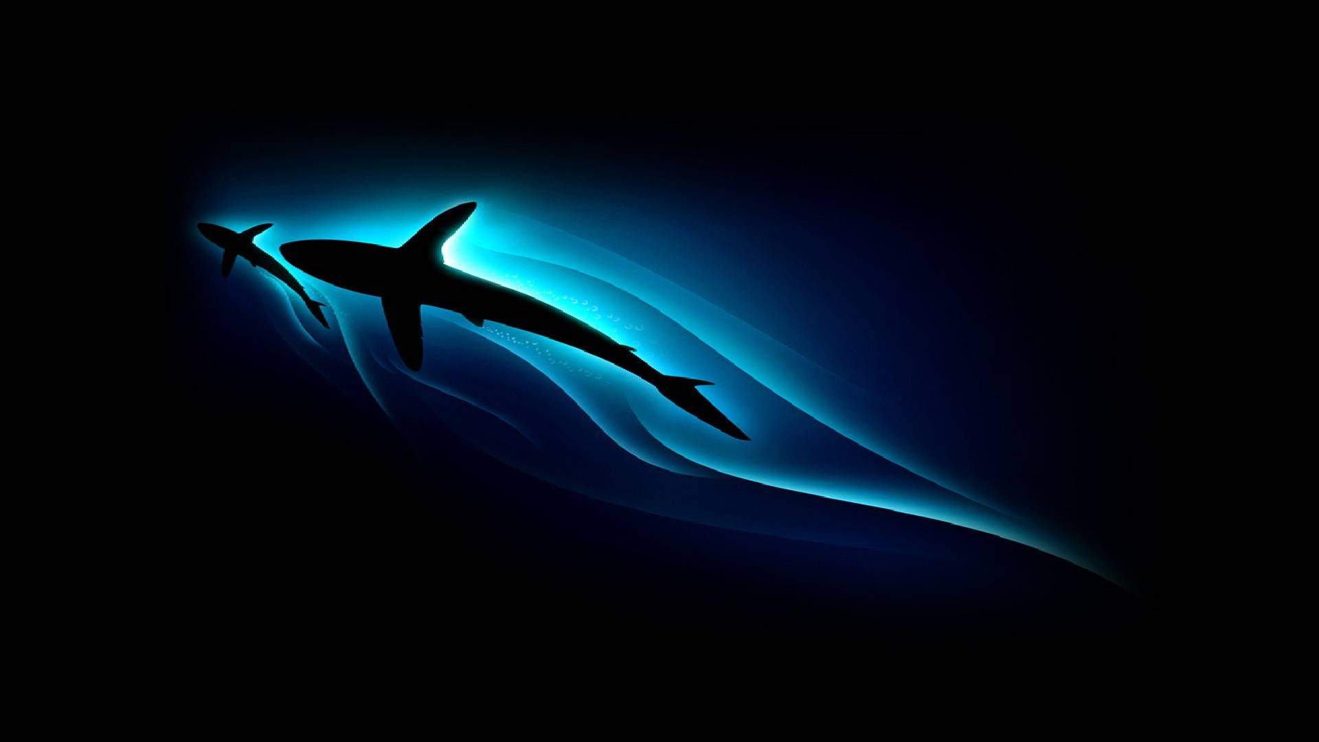 Cool Wallpapers Hd  WallpaperSafari