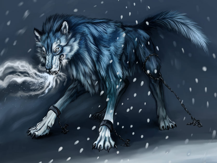 Free Download Cool Anime Wolf Images Pictures Becuo 900x678 For Your Desktop Mobile Tablet Explore 47 Cool Anime Wolf Wallpapers Wolfs Rain Wallpaper Wolf Wallpapers Free Download Wolf Desktop