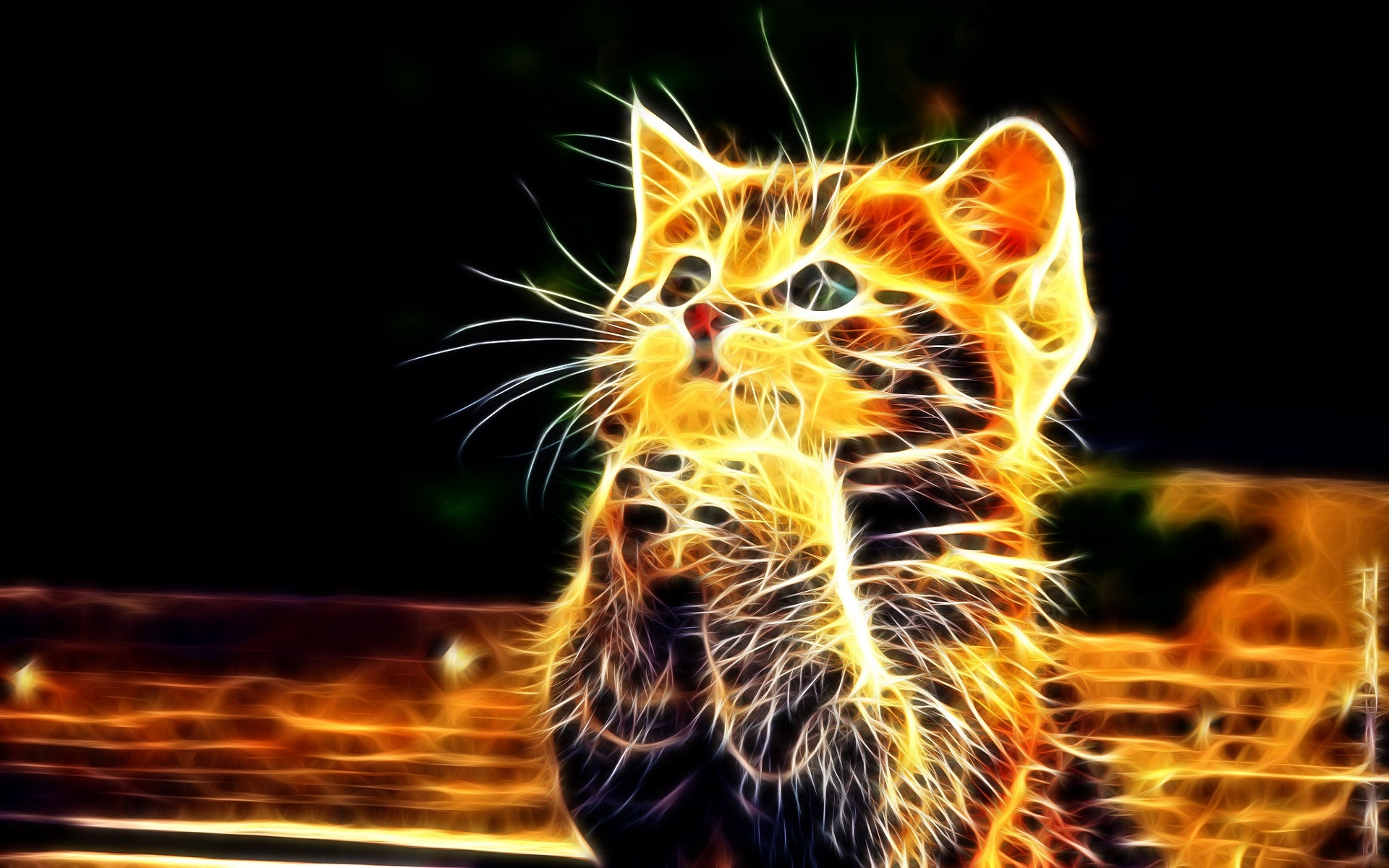 Flame cat join hands prayer HD Wallpapers Rocks 1920x1200