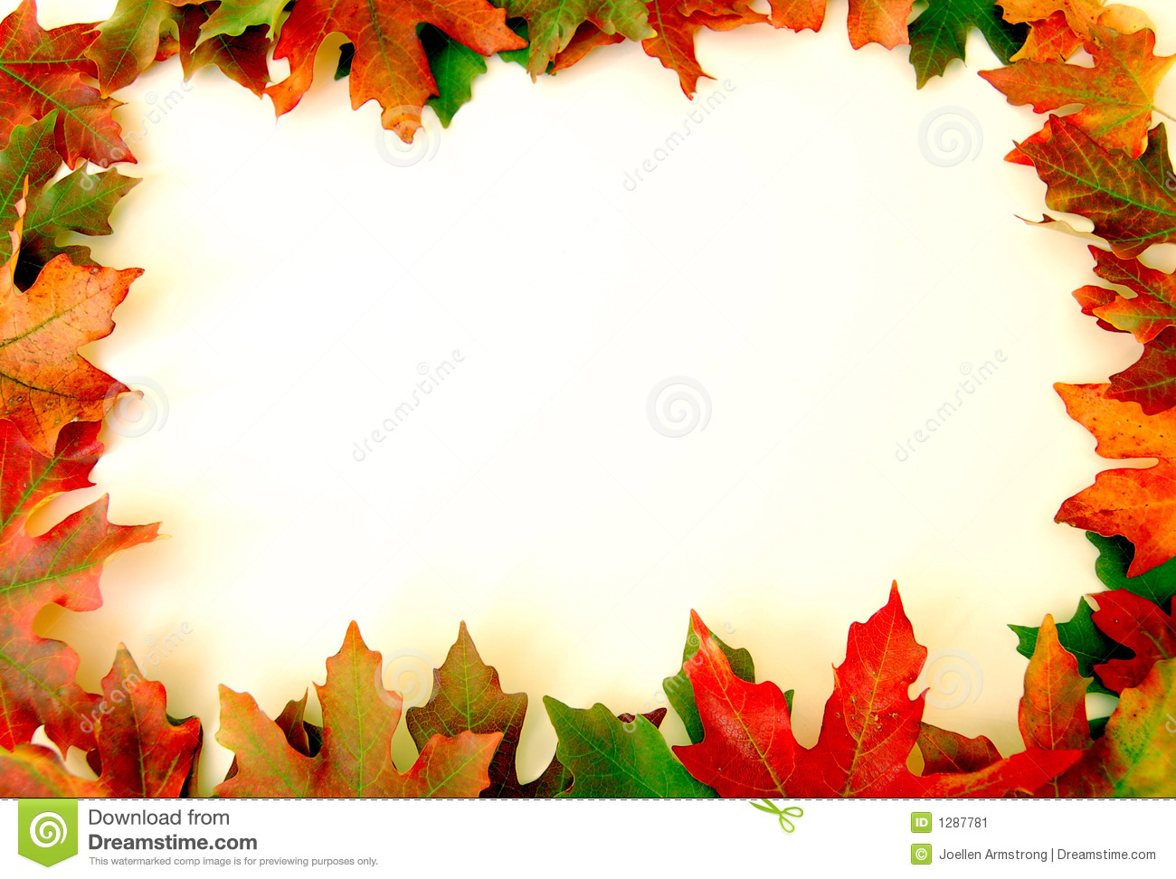 Autumn leaves on white background on border of photo 1300x972
