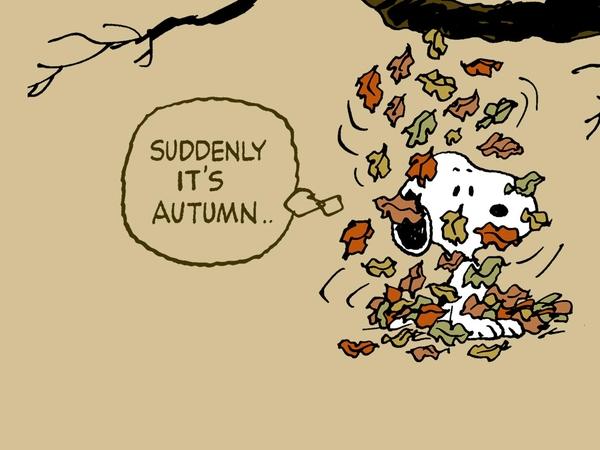 autumnSnoopy autumn snoopy peanuts comic strip 1280x960 wallpaper 600x450