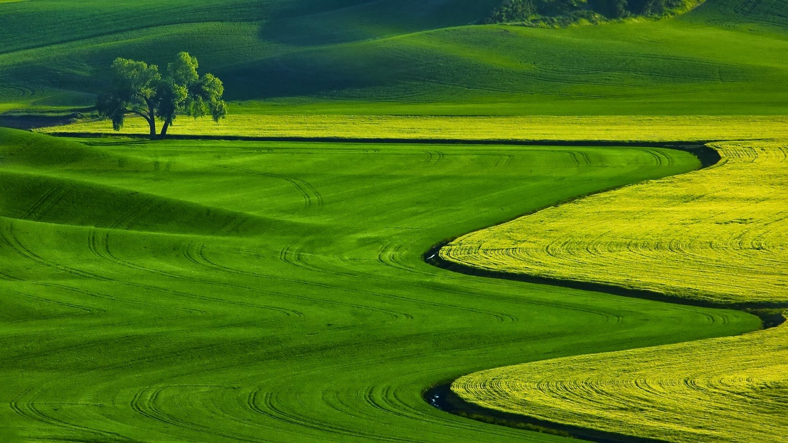 HD Nature Wallpapers Download For Laptop PC Desktop Background 1600x900