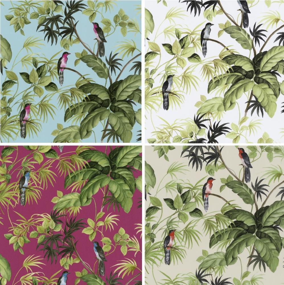 International Tropical Exotic Birds Trees Leaves Wallpaper Roll eBay 998x1000