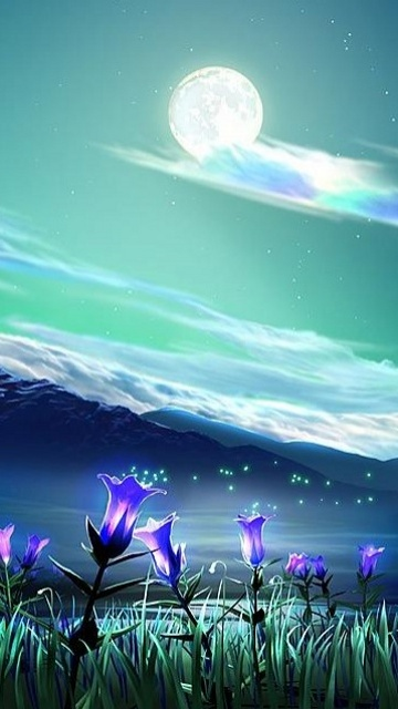 Mobile Wallpaper Download Wallpaper Amazing nature 3d wallpapers 360x640