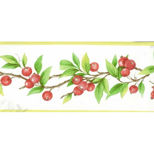 Red Berries Plant Wallpaper Border 500x500