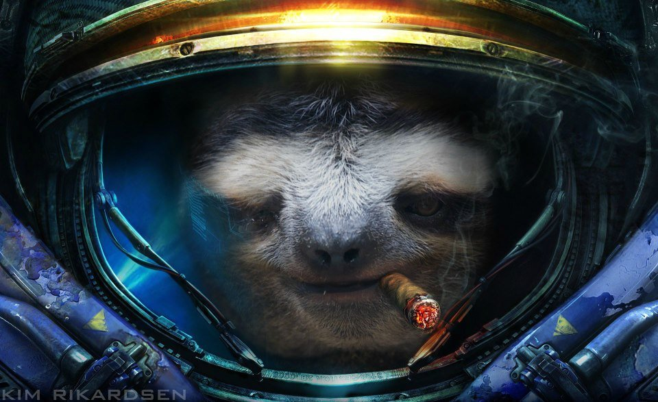 Space Sloth by Cryphisss 960x587