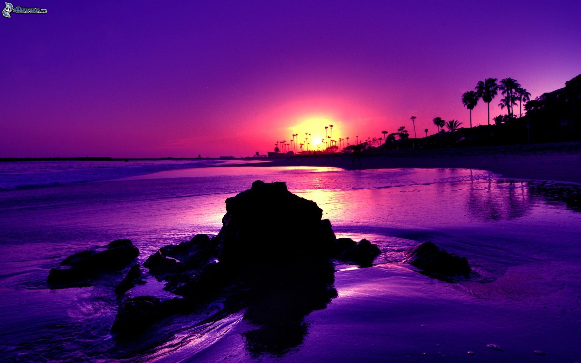 Purple Ocean Sunset HD Wallpaper Background Images 1920x1200