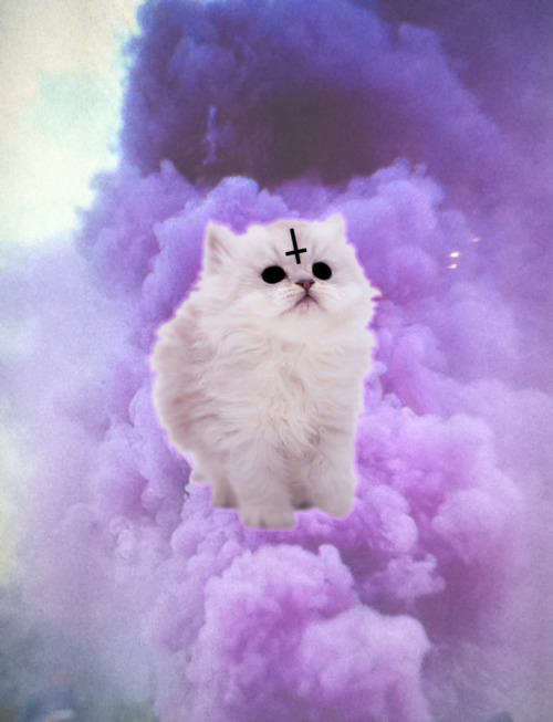 pastel pastel goth cat pastel cat cross religion 500x653
