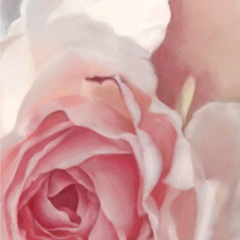 Incandescent Rose Floral Wallpaper   Ellie Cashman Design 800x800