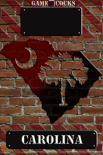 USC Gamecock iPhone Lockscreen Wallpaper Flickr   Photo Sharing 333x500