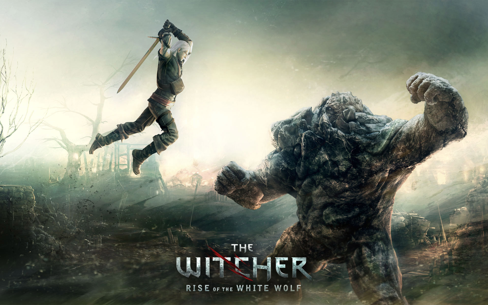 The Witcher   Rise of the White Wolf Wallpaper 6799 1920x1200