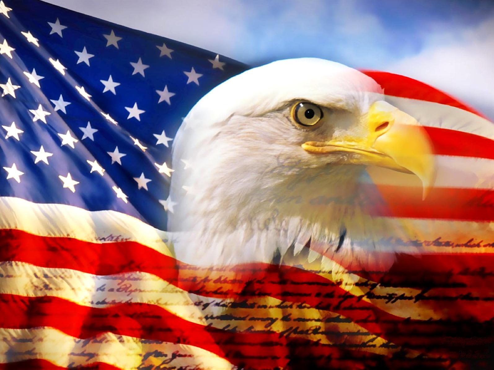 moleskinex19 The American Flag 1594x1196