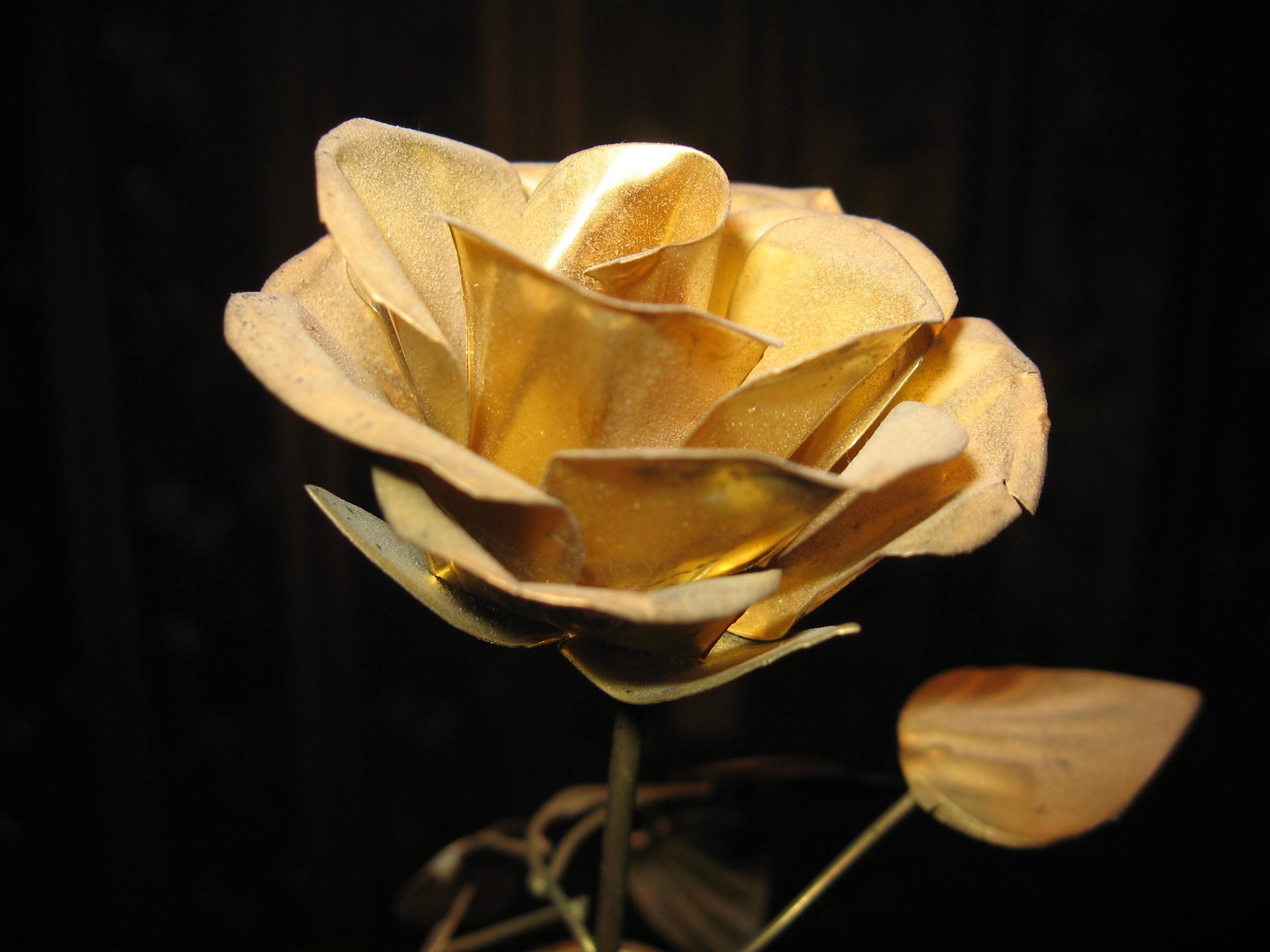 [96+] Gold Rose Wallpapers on WallpaperSafari