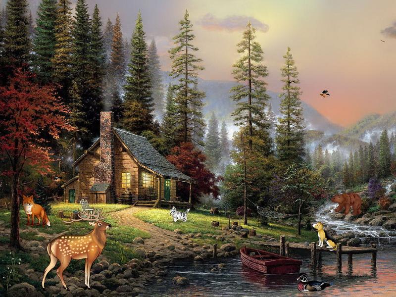 Animals Screensaver   Warmth Of Home   FullScreensaverscom 800x600