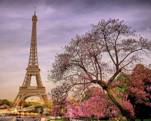 likefunme Paris Eiffel Tower in spring bloom 500x400