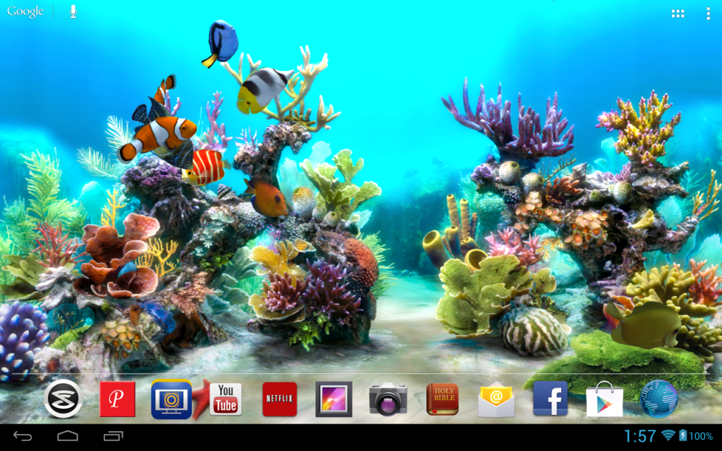 3d rendered live wallpaper background of a fish tank with beautiful 1024x640
