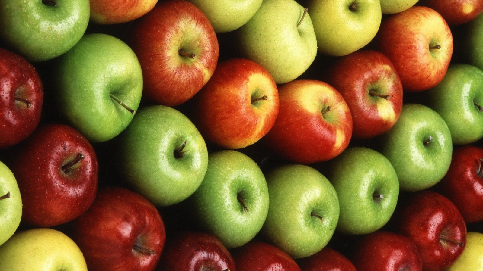 Colorful Apple Fruit Wallpapers   852x480   164061 1600x900