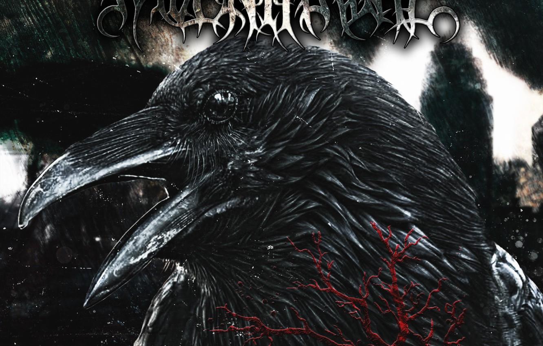 Wallpaper death destruction Raven THE DOCTRINE OF HATRED Raven 1332x850