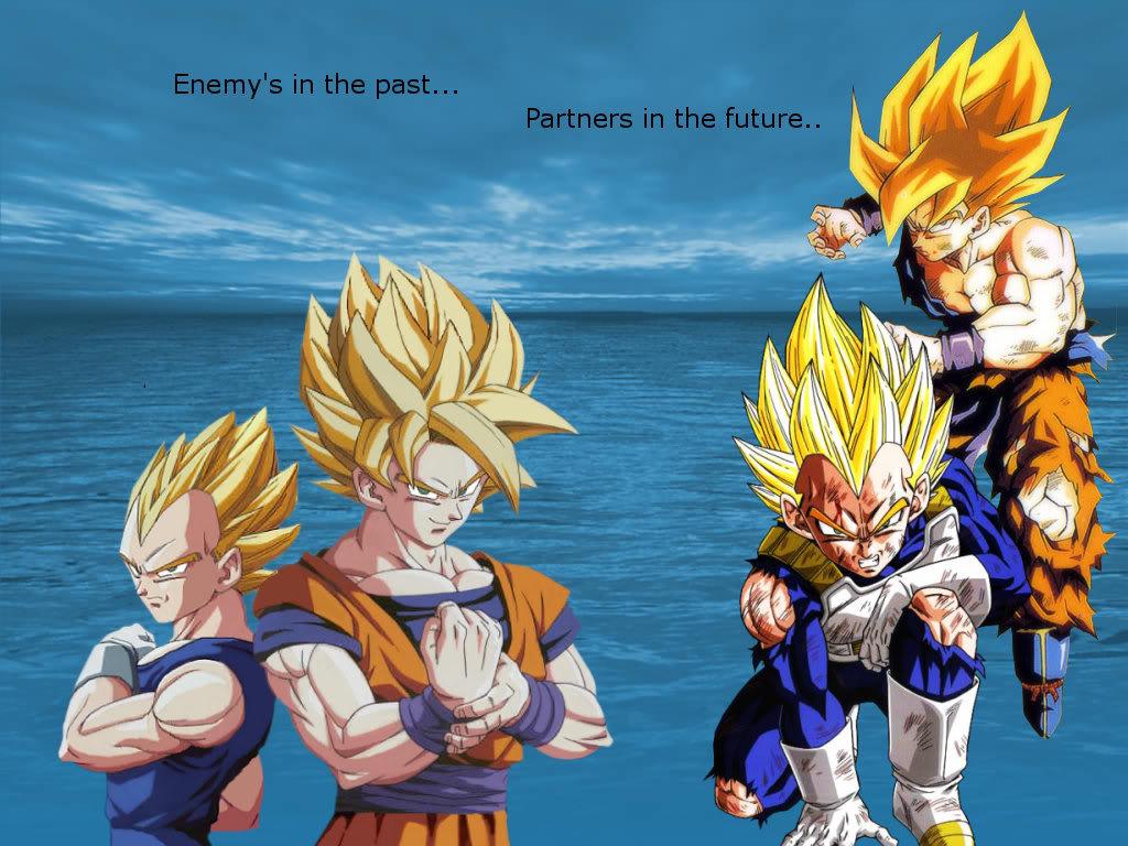 Goku and Vegeta wallpaper BleachAnimeorg Forums 1024x768