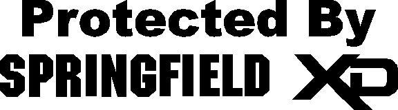 Springfield XD Logo httpwwwfastdecalscomshopcorporate logo 576x160
