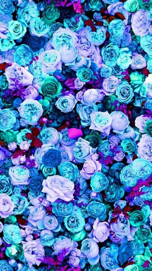 pink peonies roses floral iphone phone wallpaper background lock 500x889