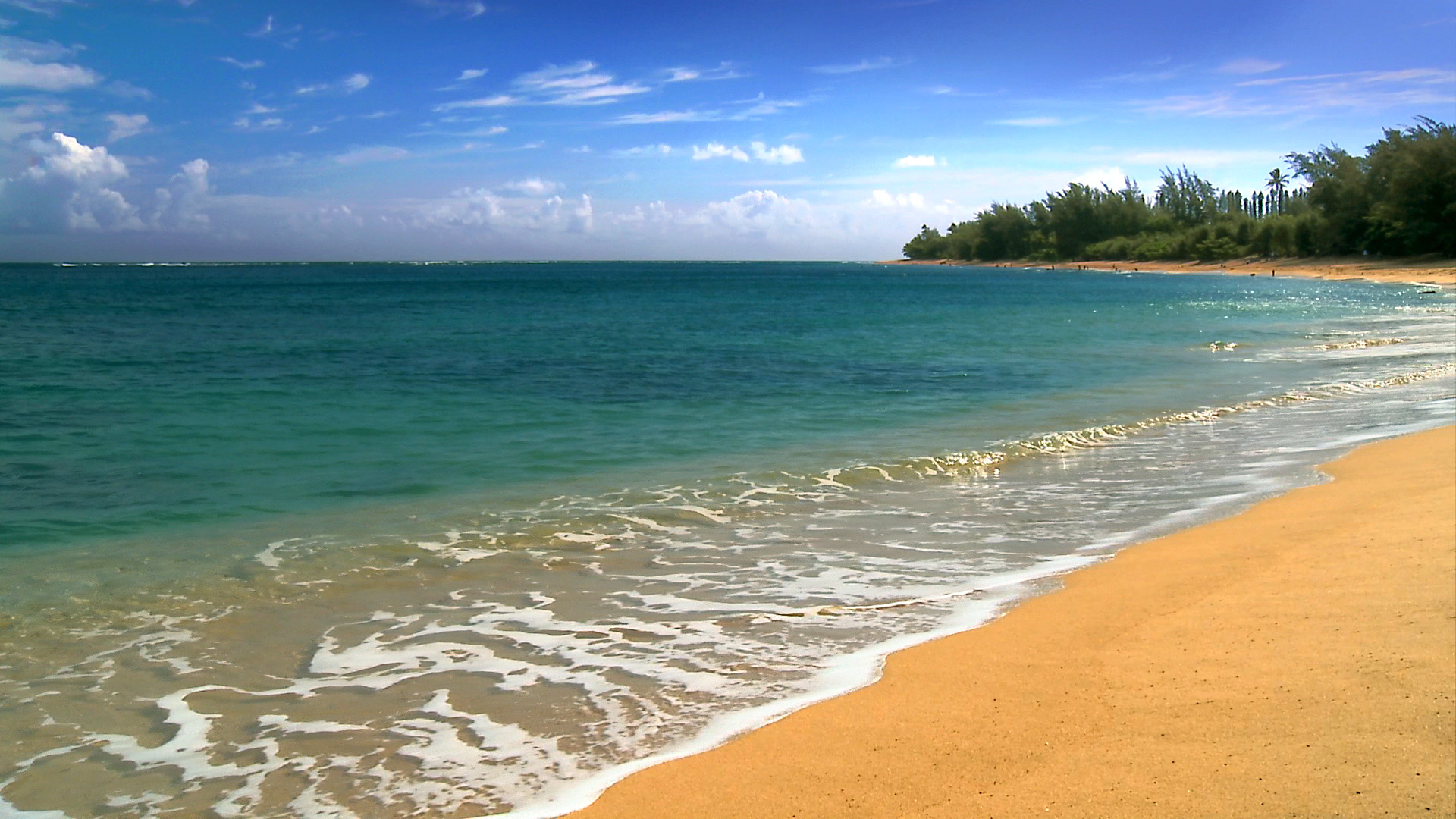 hawaii photos nature background beach beaches media webshots 1920x1080