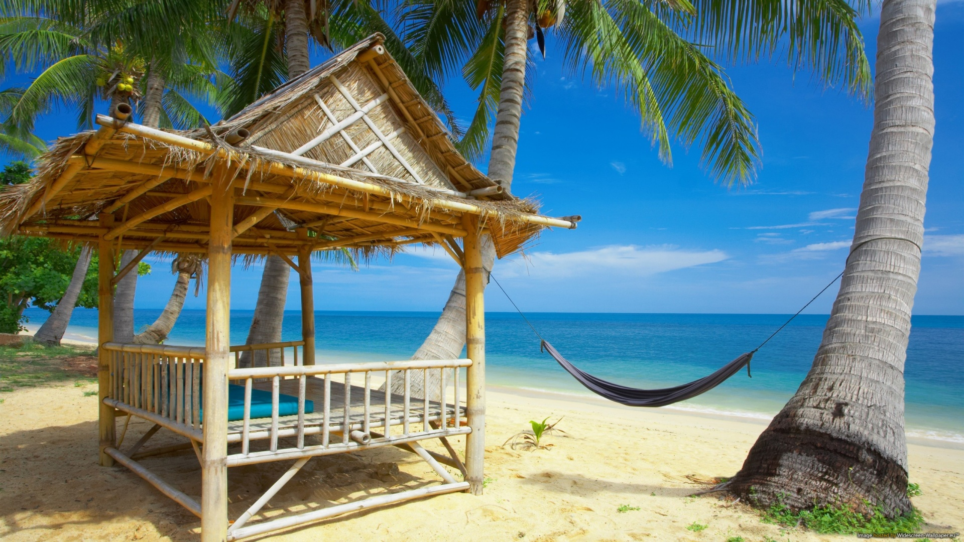 Tropical Beach Wallpaper Wallpapers9 1920x1080