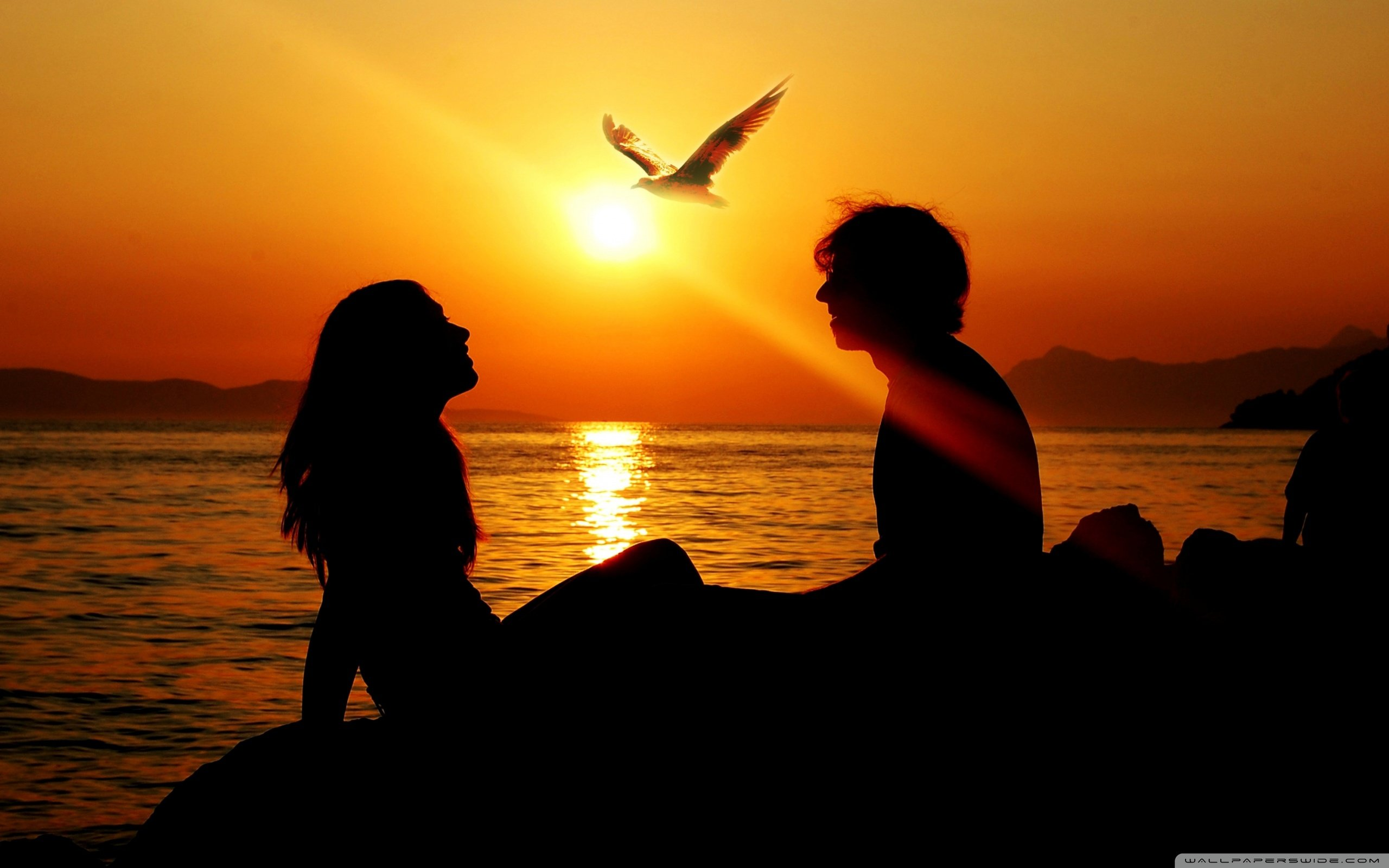 Romantic Couple Sunset 4K HD Desktop Wallpaper for 4K Ultra HD 2560x1600